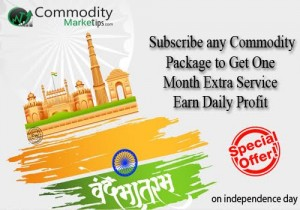 Independence Day Special offer On Commodity Tips Pacakge.-15-aug-offer-300x210-jpg